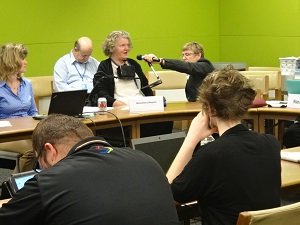 IMAGE: Rosemary Kayess presenting at side event in New York